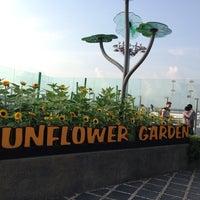 Das Foto wurde bei Sunflower Garden von valissa am 10/10/2013 aufgenommen