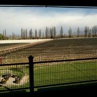 Das Foto wurde bei Dominio del Plata Winery von ANi L. am 8/31/2016 aufgenommen