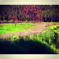 Photo taken at Cub Lake Trail by R L. on 8/4/2013