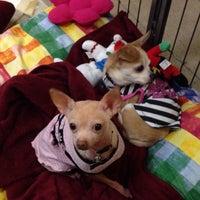 Снимок сделан в Andy's Pet Shop пользователем Princess Susannah G. 12/20/2014
