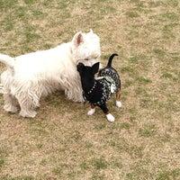 Photo taken at Badger Mountain Dog Park by Cynthia E. on 4/12/2013