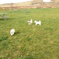 Photo taken at Badger Mountain Dog Park by Cynthia E. on 11/5/2012