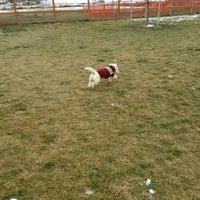 Photo taken at Badger Mountain Dog Park by Cynthia E. on 12/31/2012