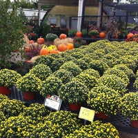 Photo taken at Green Life Nursery by Donny H. on 10/13/2012