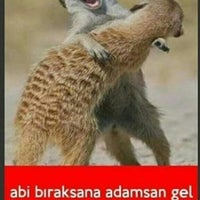 Photo taken at Iskenderun-Antakya yolu by Eyyüp Can Y. on 7/26/2016