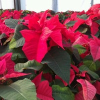 Photo taken at Farmer John's Greenhouse by Jello J. on 11/21/2012