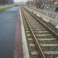 Photo taken at Poliklinika (tram, bus) by Mistr F. on 11/18/2013