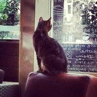 2/28/2013 tarihinde Korhan G.ziyaretçi tarafından Caribou Coffee'de çekilen fotoğraf