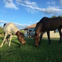 Photo taken at Terrells Creek Farm by Marena C. on 4/23/2016