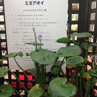 Photo taken at 手柄山温室植物園 by 浩三 小. on 9/15/2014
