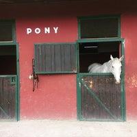 Photo taken at Roma Polo Club by The Romachic on 5/15/2015