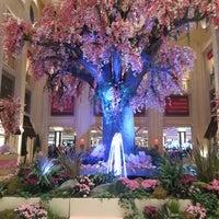 3/22/2013 tarihinde Nancy D.ziyaretçi tarafından The Palazzo Resort Hotel & Casino'de çekilen fotoğraf