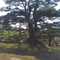 Photo taken at Neagarinomatsu Pine by どん ち. on 9/9/2017