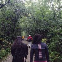 Photo taken at Oak Ridges Corridor Park by Duncan L. on 9/6/2014