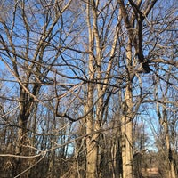 Photo taken at Edina Taylor Cons Park by Culley S. on 12/6/2017