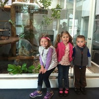 Photo taken at Lindsay Wildlife Museum by Traci M. on 3/20/2013