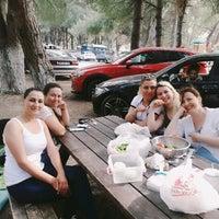 5/14/2017 tarihinde Fatma E.ziyaretçi tarafından Süleymanlı Köyü Piknik Alanı'de çekilen fotoğraf