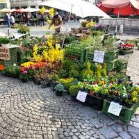Photo taken at Zelný trh by Michal on 4/24/2013