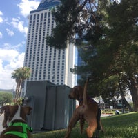 Photo taken at The Palms by Eve G. on 7/12/2017