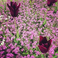 Photo taken at Jardins Albert Kahn by Pierre J. on 5/1/2013