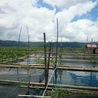 Photo taken at Danau Tondano by Christian A. on 3/13/2017