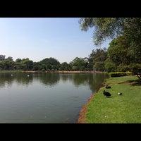 Foto tirada no(a) Lago do Ibirapuera por Robson H. em 10/27/2012