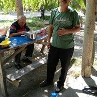 Photo taken at sarayönü zengi balık tesisleri by Fatih A. on 8/22/2015