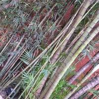 Foto tomada en Bambu por Patricia N. el 9/14/2012