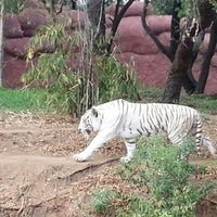 Photo taken at Nehru Zoological Park by Apoorv T. on 2/15/2013