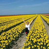 Photo taken at Hollandia by Aysel Y. on 4/30/2017