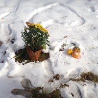 Photo taken at Provo City Cemetery by Heather C. on 11/14/2012