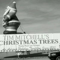 Photo taken at Tim Mitchell Tree Lot by Milton R. on 12/1/2012