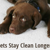 Photo taken at Heaven's Best Carpet Cleaning Ventura CA by Heaven's Best Carpet Cleaning Ventura CA on 5/7/2015