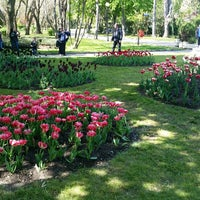Photo taken at The Floral Fair by Krasi4779 . on 5/3/2017