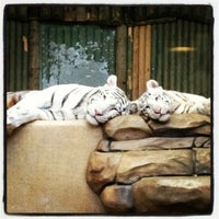 Photo taken at ZOO Liberec by Honza S. on 1/25/2013
