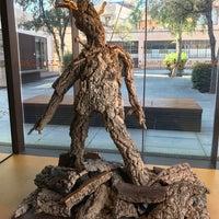 Photo taken at Museu del suro by Dmitriy V. on 6/17/2017