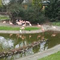 Foto tirada no(a) Miejski Ogród Zoologiczny por Luiza J. em 4/25/2013