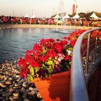 Photo taken at Dubai Miracle Garden by Prash S. on 3/15/2013