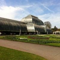 4/23/2013 tarihinde Colleen H.ziyaretçi tarafından Royal Botanic Gardens'de çekilen fotoğraf