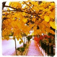 Photo taken at Çayyolu by Huseyin C. on 11/11/2012
