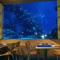 Photo taken at Coral Reef Restaurant by John S. on 7/29/2013