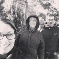 Jordan Lake Christmas Tree Farm - 2170 Marthas Chapel Rd