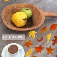 Photo taken at Eflatun by Ayten Ç. on 11/19/2017