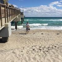Photo taken at City of Dania Beach by Fallon R. on 2/28/2016