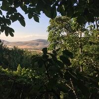 Photo taken at Kestel Ormanı by Arife B. on 7/16/2017