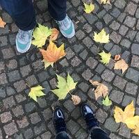 Photo taken at Bushaltestelle Uhlandstraße by Olesya P. on 11/11/2017