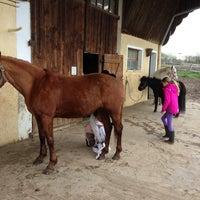 Photo taken at Sports Equestres De Belle Ferme by Kassandra Boyd on 4/20/2013