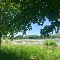 Photo taken at Normandale Lake Park by Jenna B. on 6/9/2017