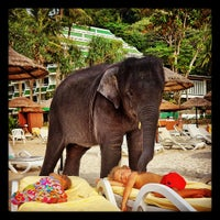 Photo taken at Le Méridien Phuket Beach Resort by Henrieta S. on 11/15/2012