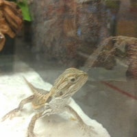 Photo taken at Petco by Elizabeth R. on 10/5/2012